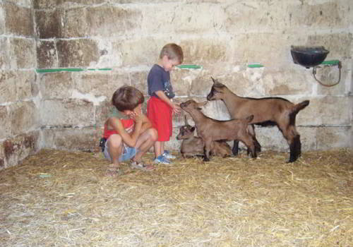 004-masseria-didattica-agriturismo-masseria-sant-angelo-corigliano-d-otranto-salento