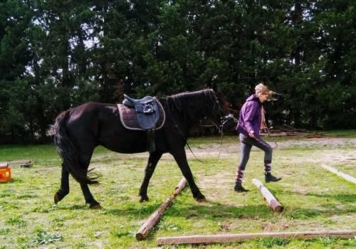 Emozione cavalli Tex